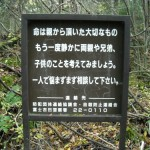Japan's Suicide Woods | Aokigahara